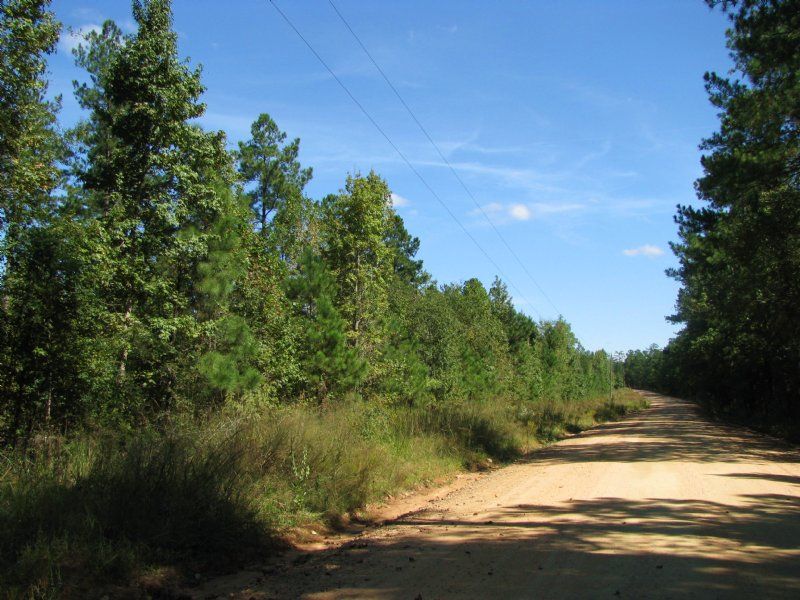 ±166 Acres For Sale : Haddock : Jones County : Georgia
