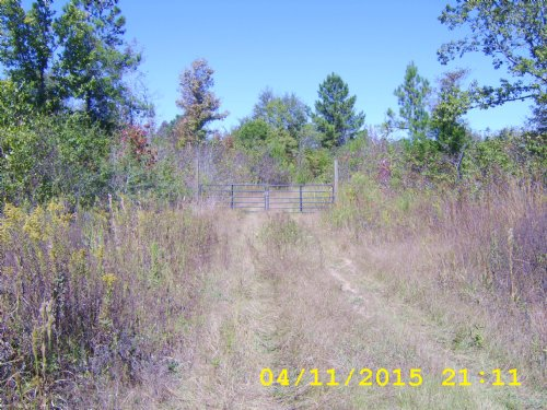 118 Acres : Rose Hill : Jasper County : Mississippi
