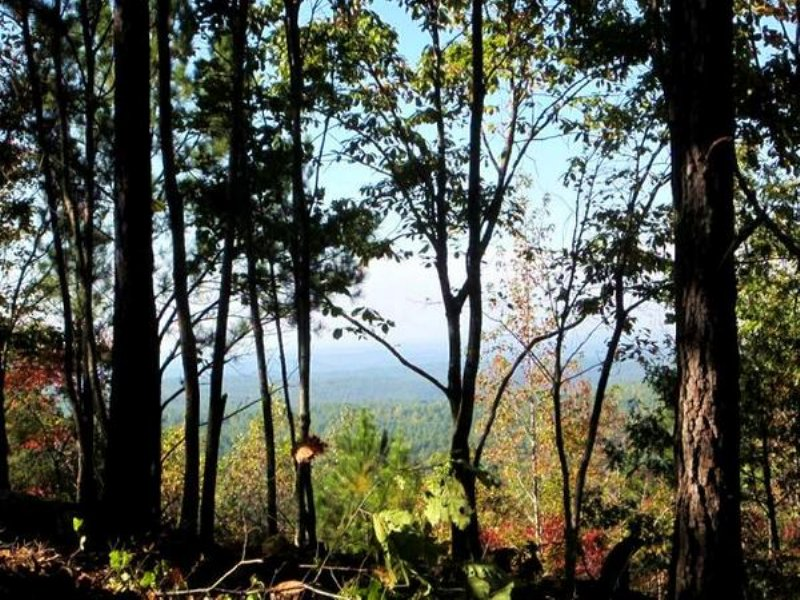5.4 Mountain Top Ac In Lineville : Lineville : Clay County : Alabama