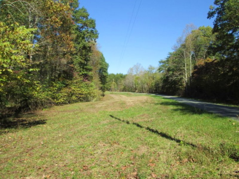 11.63 Wooded Acres : Columbia : Adair County : Kentucky