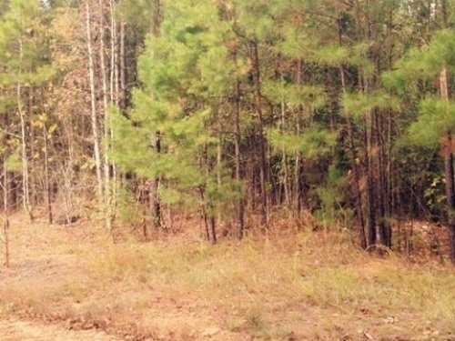 Lot With Lake Access : Sparta : Hancock County : Georgia