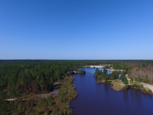 444 Acres Waterfront Property : Hortense : Brantley County : Georgia