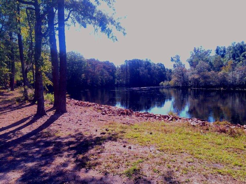 Lumber River Retreat : Nichols : Marion County : South Carolina