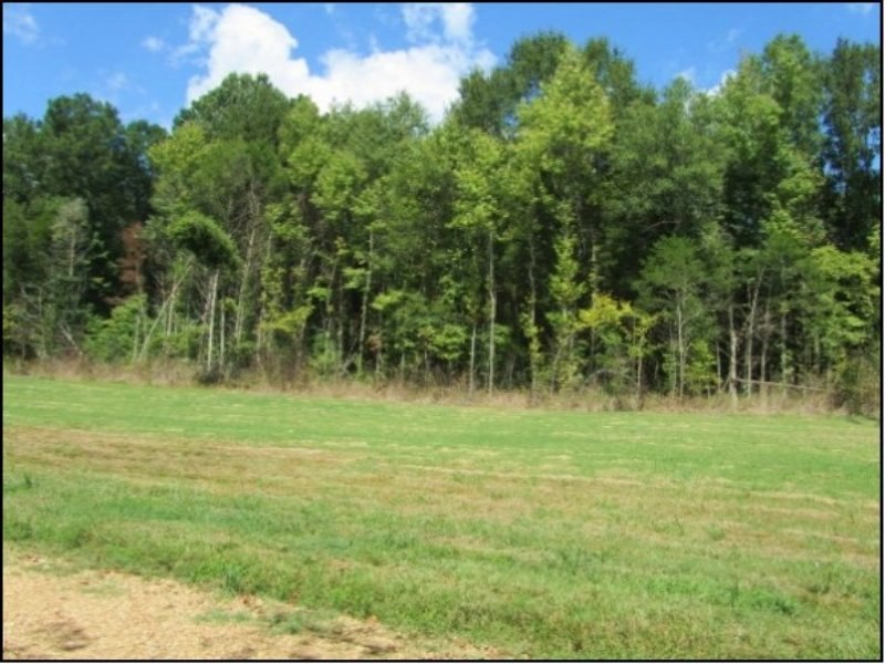 13.88 Acres In Oktibbeha County : Starkville : Oktibbeha County : Mississippi