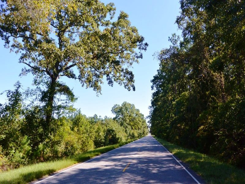 Berkeley County Recreational Homesi : Alvin : Berkeley County : South Carolina