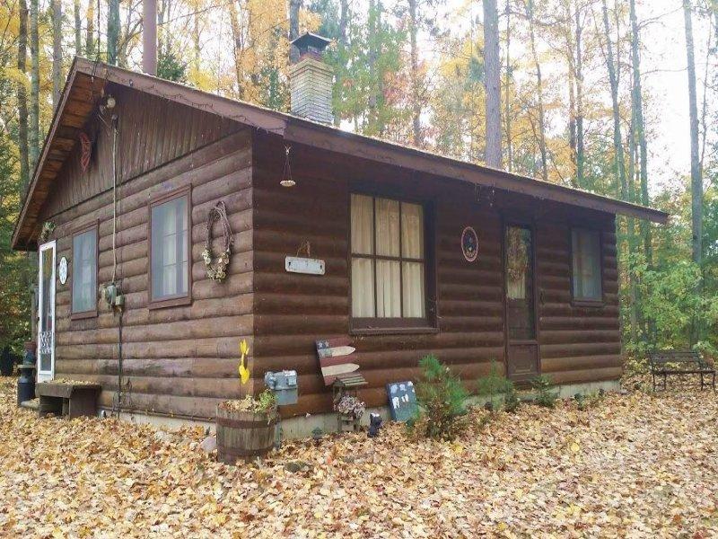 Asorable Log Sided Cabin : Atlanta : Montmorency County : Michigan