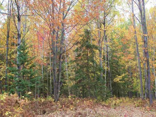 Skanee Rd., Mls# 1090896 : Skanee : Baraga County : Michigan