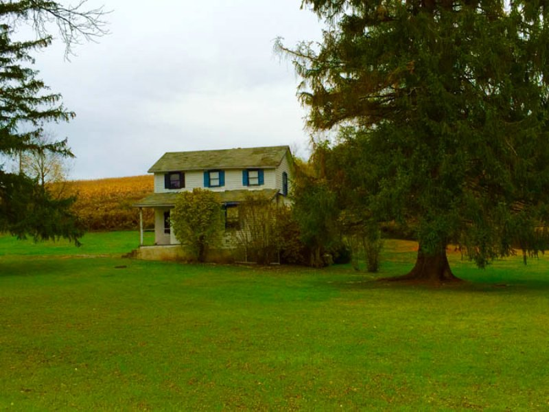 99+/- Acre Farm : Trout Run : Lycoming County : Pennsylvania