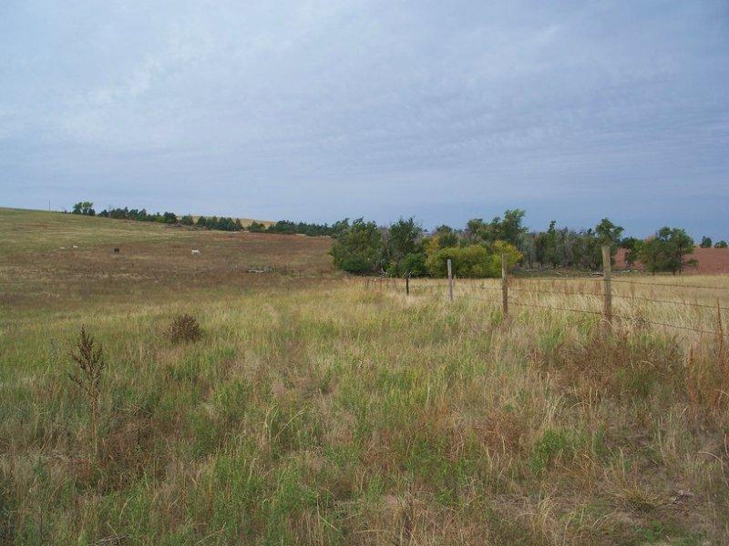 Sheridan County Grass & Crp : Rushville : Sheridan County : Nebraska