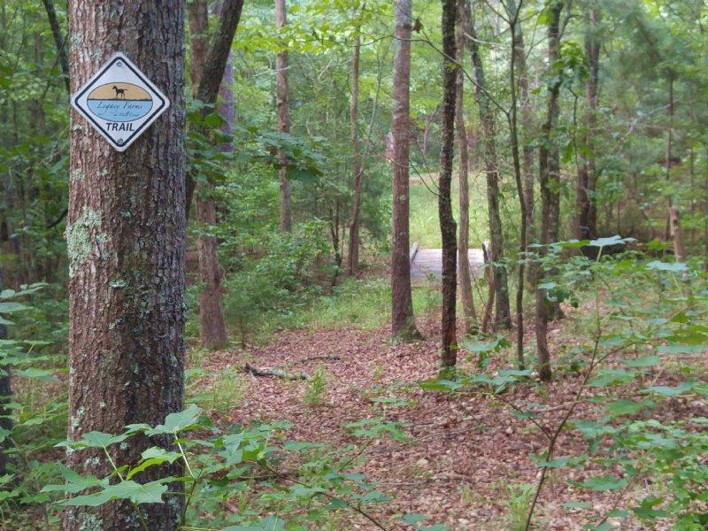 Legacy Farms Equstrian Hobby : McCormick : McCormick County : South Carolina