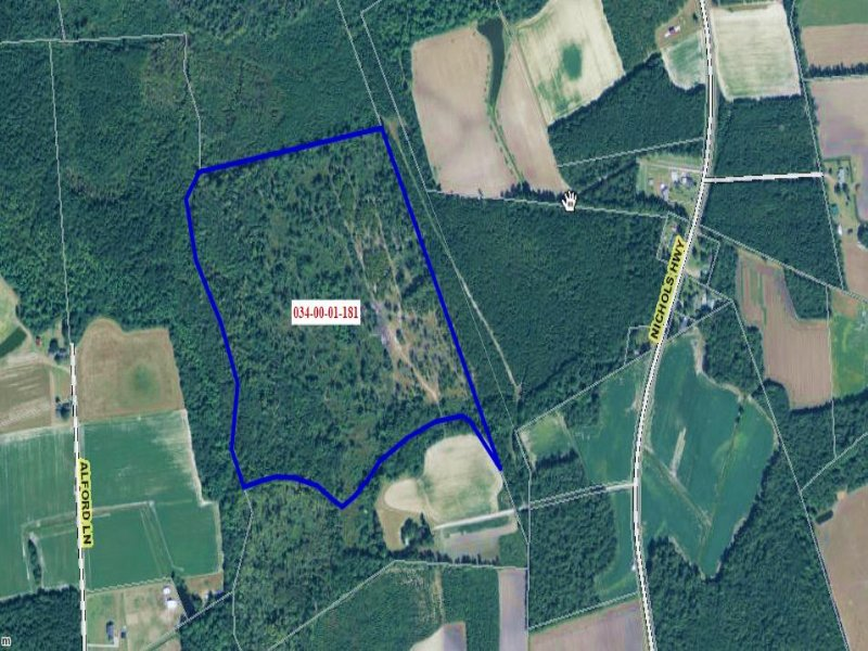 56.50 Acres Farm And Woods Land : Galivants Ferry : Horry County : South Carolina