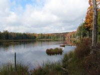 Waterfront Home Private Pond 90 Ac : McDonough : Chenango County : New York