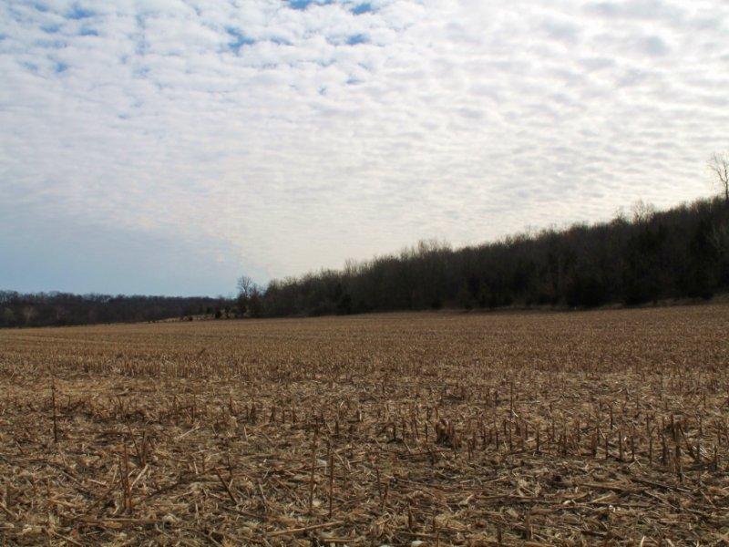 92 Acres : Madisonville : Ralls County : Missouri