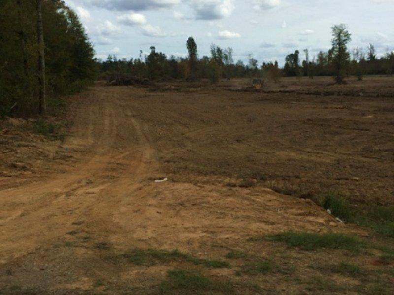 10 Acres For Sale : Mantee : Webster County : Mississippi