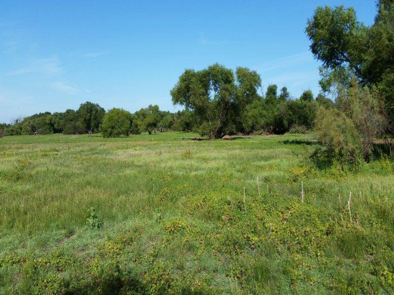Red River 421 : Waurika : Jefferson County : Oklahoma