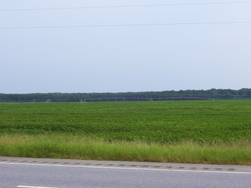 Irrigated And Recreational Land : Blakely : Early County : Georgia
