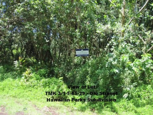 Near Hilo, Close To Ocean, : Pahoa : Hawaii County : Hawaii