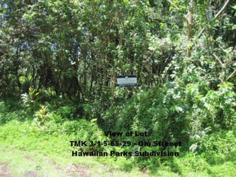 Near Hilo, Close To Ocean, : Pahoa : Hawaii County : Hawaii