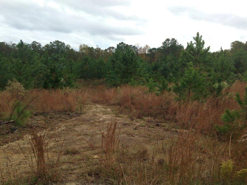 153.24 Acres : McCormick : McCormick County : South Carolina