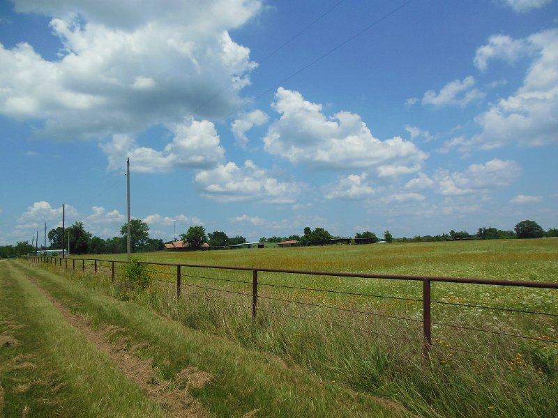160 Acres (#29548) : Sumner : Lamar County : Texas