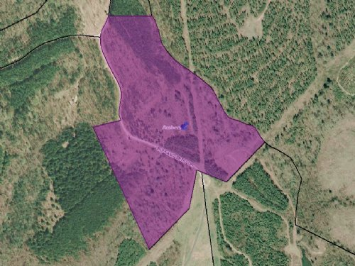 25.36 Wooded Acres : Amherst : Virginia