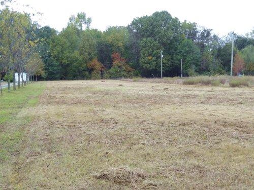 3 Ml Acre Lot Near Bayou Meto : Humphrey : Arkansas County : Arkansas