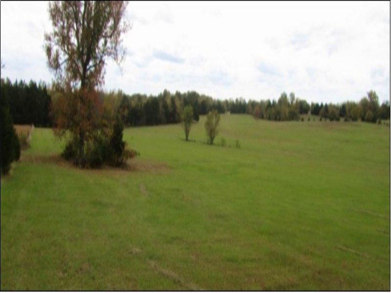 30.69 Acres Undeveloped Land : Starkville : Oktibbeha County : Mississippi