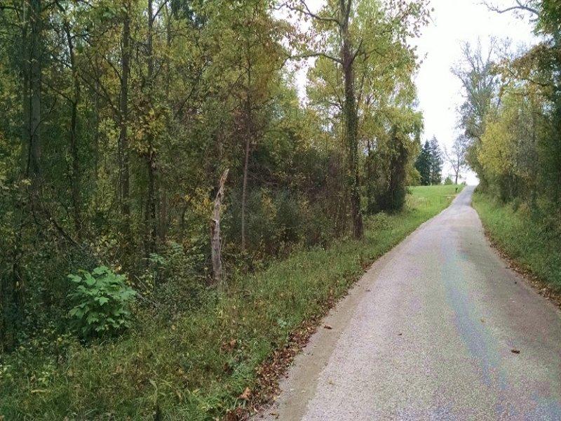 Stout Rd - 58 Acres : Logan : Hocking County : Ohio