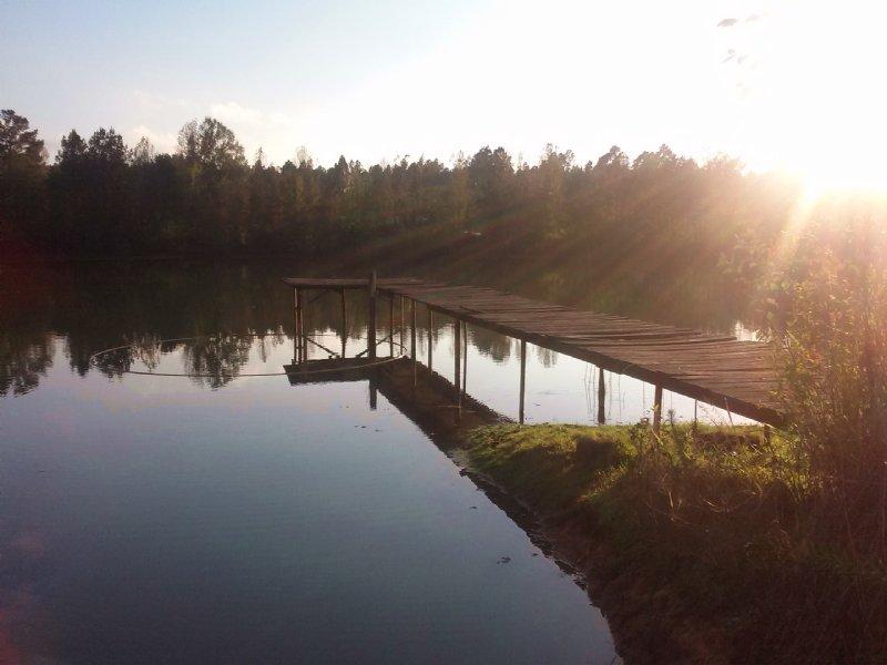 Sumner Pond Farm : Wrightsville : Johnson County : Georgia