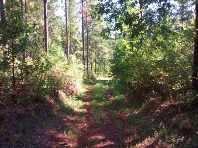 Lane Hills : Monticello : Jasper County : Georgia