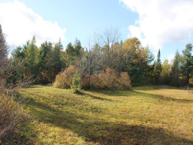 51 Acres Near State Land & Trails : Montague : Lewis County : New York