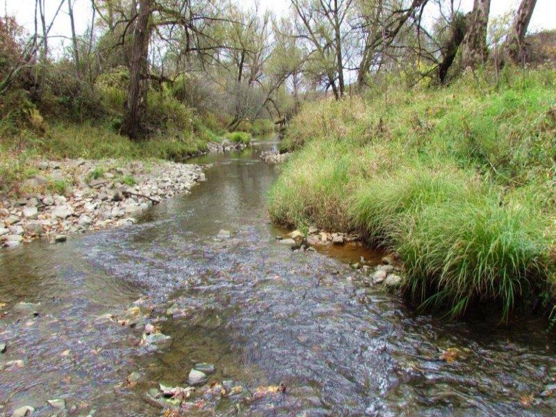 Land With Trout Stream 42 Acres : Marathon : Cortland County : New York