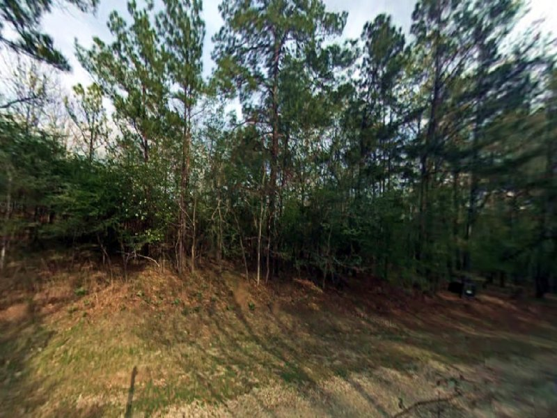 Residential Lot For Sale In Coldspr : Coldspring : San Jacinto County : Texas