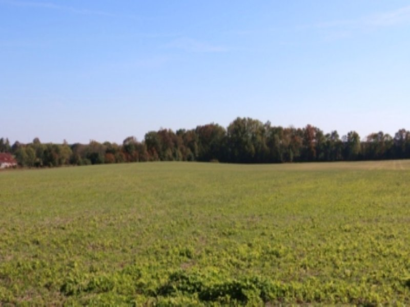 194.68 Ac Of Cropland : Smithville : DeKalb County : Tennessee