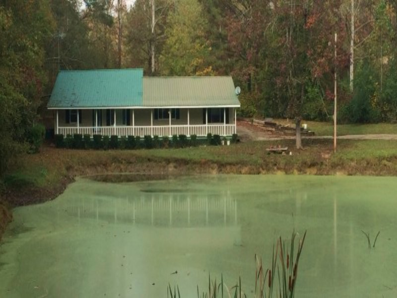 40+/- Acres With Home & Pond : Wadley : Clay County : Alabama