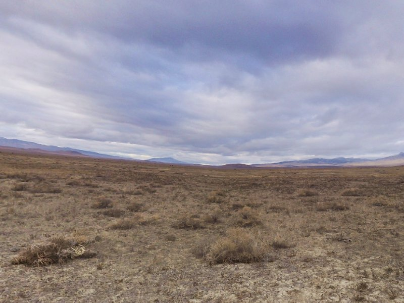 56 Acres For Sale : Imlay : Pershing County : Nevada