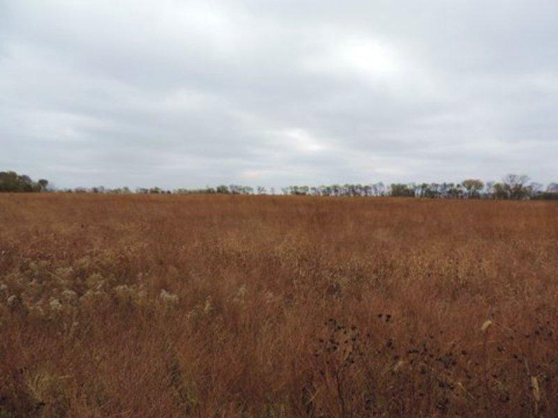 Thomsen South : Hartford : Coffey County : Kansas