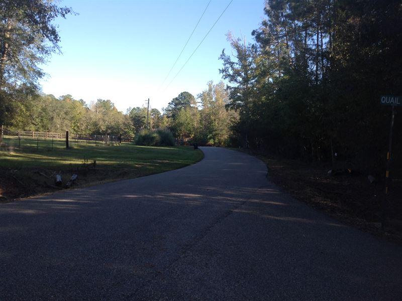 29-031 Hidden Forest : Wetumpka : Elmore County : Alabama