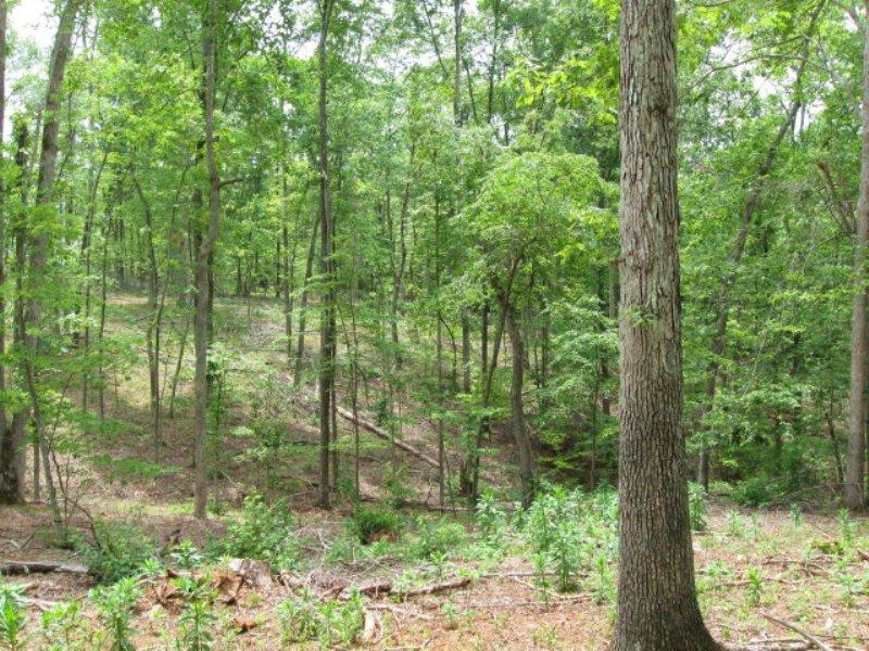 Leesville Lake Area : Huddleston : Bedford County : Virginia