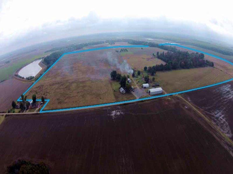 280 +/-  Acre Farm : Ulm : Prairie County : Arkansas