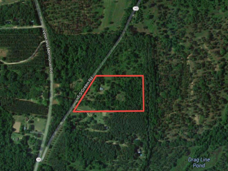 11acre Hunting Tract : Tallahassee : Leon County : Florida