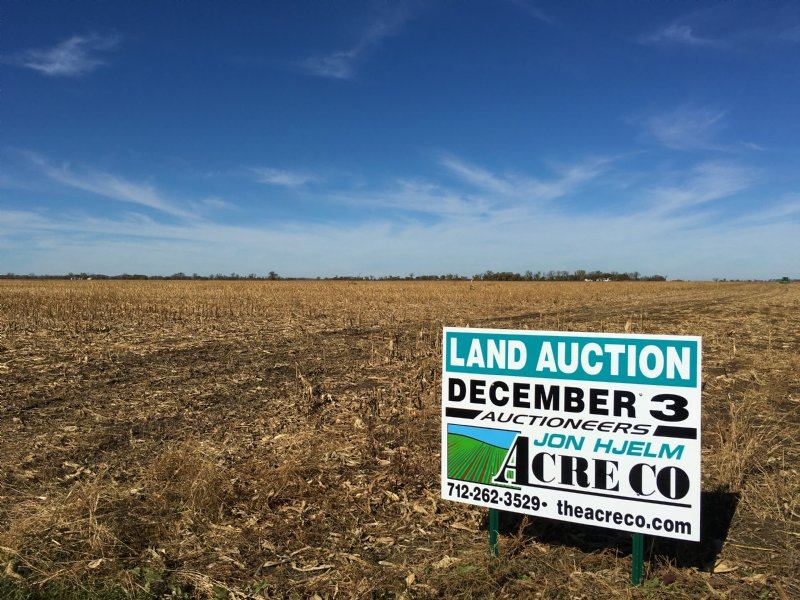Large Irrigated Farm - 3 Tracts : Modale : Harrison County : Iowa