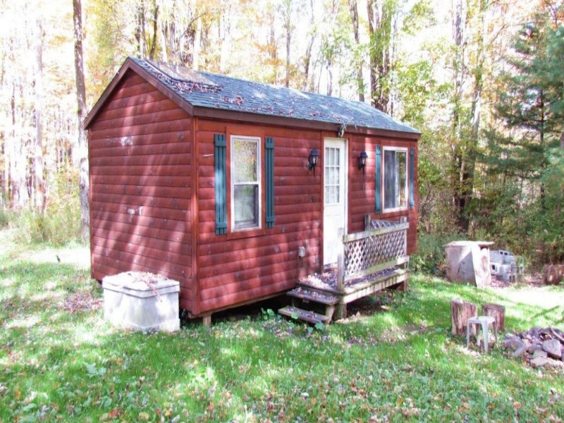 Cabin With Stream On 7 Acres : Greene : Chenango County : New York