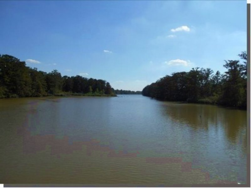 140.00 Acres Fishing Land, Hunting : Dundee : Tunica County : Mississippi