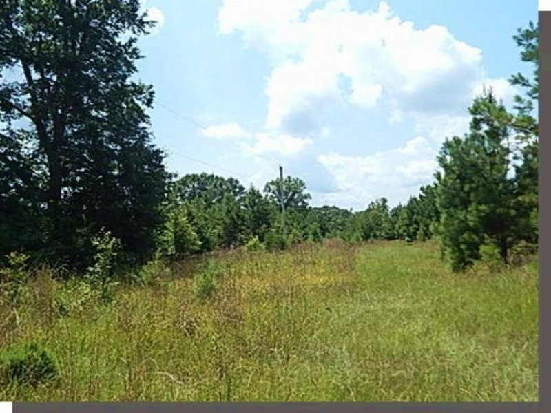 96.60 Acres Hunting Land, Pasture : Crystal Springs : Copiah County : Mississippi