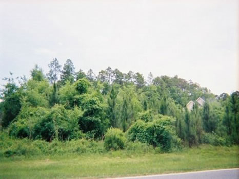 Prime Residential Lot : Swainsboro : Emanuel County : Georgia