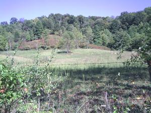 144.00 Acres  : Flatwoods : Braxton County : West Virginia