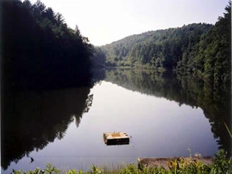 346.52 Acres : Clarkesville : Habersham County : Georgia