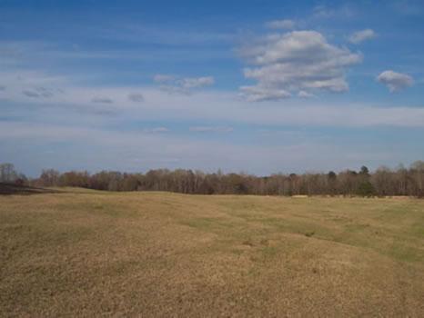 136 Acres : Sandersville : Washington County : Georgia