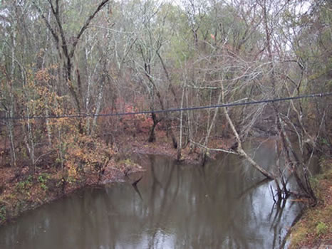 66.04 Acres : Wrightsville : Johnson County : Georgia